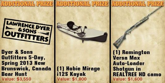 Additional Prizes