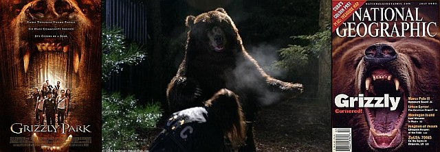 Brody the bear stared in Grizzly Park