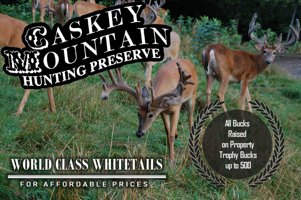 Caskey Mountain Hunting Preserve